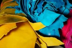badanas colores 2