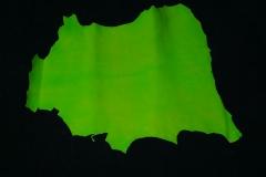 Cabrito Verde