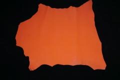 cabrito naranja 2
