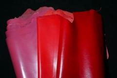 cabritos colores 2